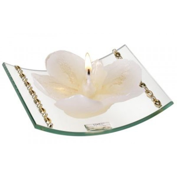 Curved Glass Candle Holder W. Gold Bands and Crystals Candle Incld #30078
