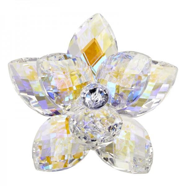 Debora Carlucci 24% Crystal Lotus Waterlily #34083