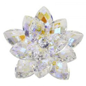 Debora Carlucci 24% Crystal Lotus Waterlily #34084