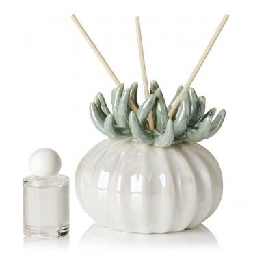 Debora Carlucci Teal Coral Diffuser W/ Frosted Porcelain Bottom #DC4989V